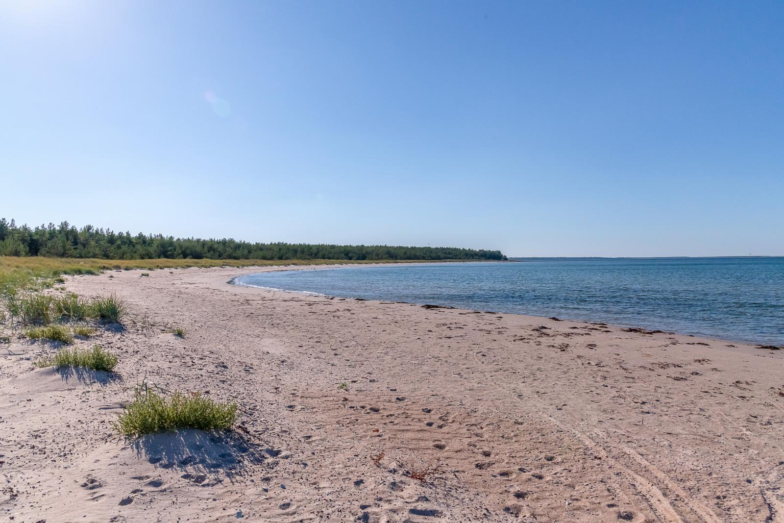Skärsviken på gångavstånd Fårö Skär 1389b